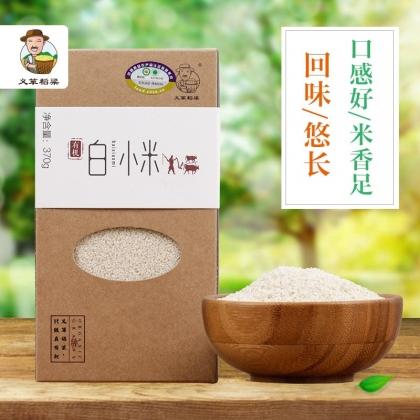 义箪稻粱有机白小米370g新米五谷杂粮粗粮