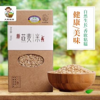 义箪稻粱有机燕麦米360g 五谷杂粮粗粮燕麦仁燕麦粉