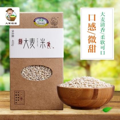 义箪稻粱有机大麦米400g五谷杂粮粗粮大麦仁米