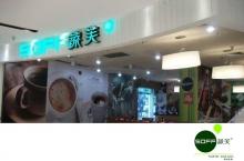 SOFF蔬芙(南庄店)